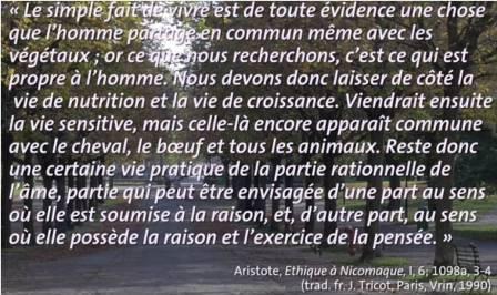 Aristote-Ethique-à-Nicomaque-qu'est-ce-que-le-bien-spécificité-humaine